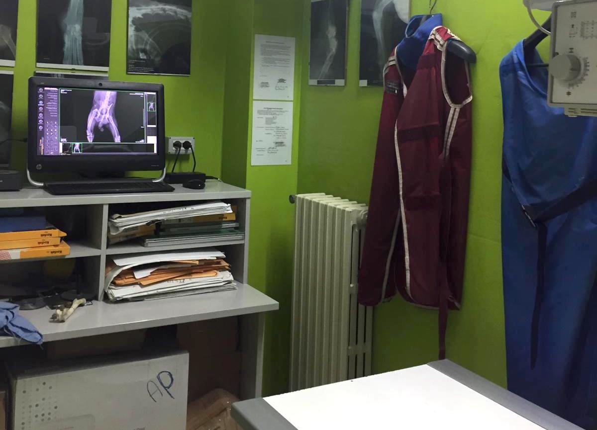 reparto_radiografie_clinica_veterinaria_mordenti