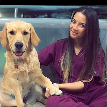 veterinaria_anna_dellamaestra