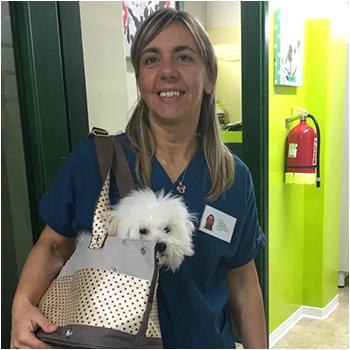 veterinaria_roberta_campanella
