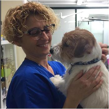 veterinaria_sonia_mazzocchetti